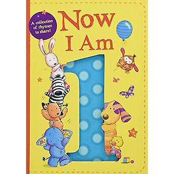 Now I Am 1 door Rachel Baines - 9781848699304 Boek