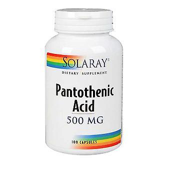 Solaray Pantothensäure, 500 mg, 250 Kapseln
