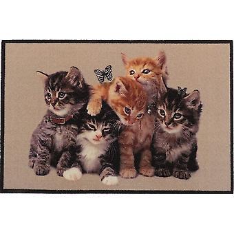 Wokex Design Fumatte Katzen Ktzchen Kätzchen, lustiges & niedliches Motiv, rutschfest & waschbar, Deko