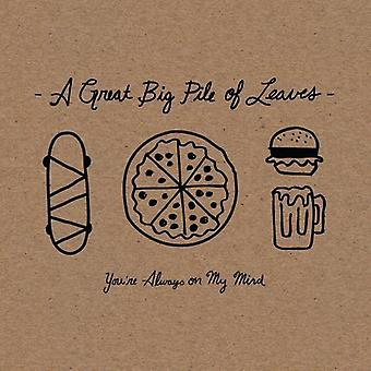 Great Big Pile of Leaves - Youre Always on My Mind [CD] USA import