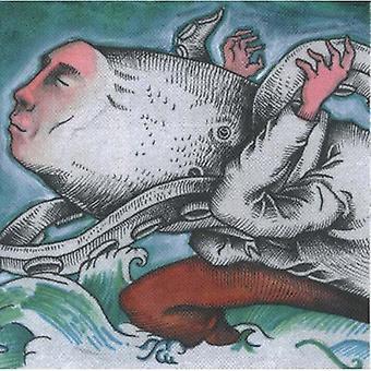 Okkervil River - Down the River of Golden Dreams [Vinyl] USA import
