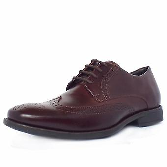 Anatomic & Co Mococa Men's Brogue Shoes In Burgundy Cafe Leather