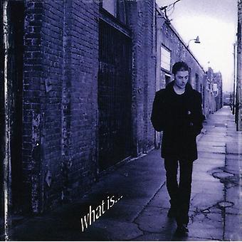 Richie Kotzen - What Is [CD] USA import
