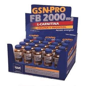 GSN Pro Fb 2000Mg 30ml