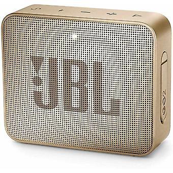 FengChun GO 2 kleine Musikbox in Champagner Wasserfester, portabler Bluetooth-Lautsprecher mit