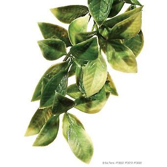 エキソ テラ エキソ テラ プラスチック植物マンダリン、小さな