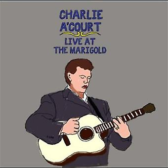 Charlie a'Court - Live at the Marigold [CD] USA import