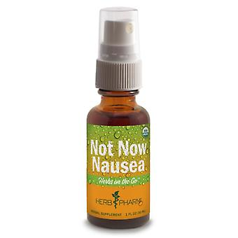 Herb Pharm Herbs on the Go: Not Now Nausea 1 oz