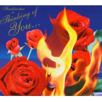 Freakwater - Thinking of You [CD] USA import