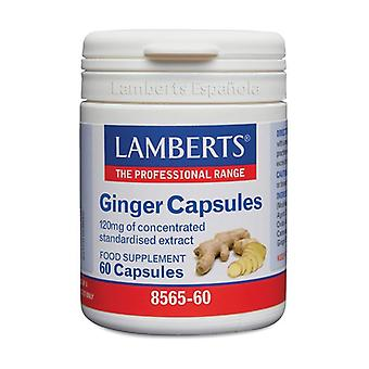 Ginger 60 capsules of 120mg