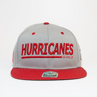 '47 Nhl Carolina Hurricanes Grey Snapback Cap