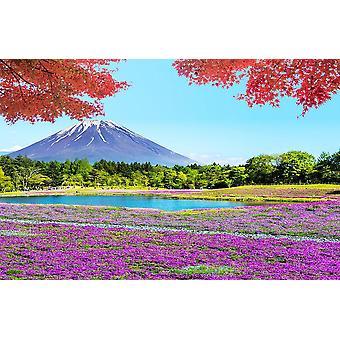 Muur muurschildering Fuji Mountain