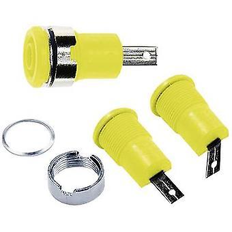 Stäubli SLB4-F/שקע בטיחות socket שקע, מוכלל לבן 1 pc (עם)