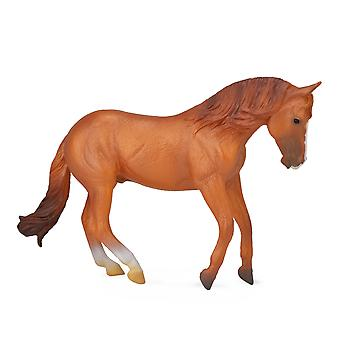 CollectA Australian Stock Horse Stallion - Chestnut