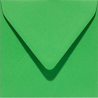 Papicolor 6X Sobre 140X140mm Vert Vif