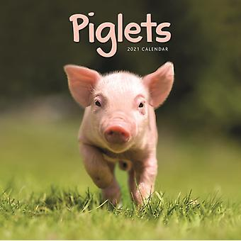 Piglets Mini Square Wall Calendar 2021