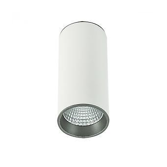 Lámpara De Techo Spot Técnica Y Moderna Moldes Big Wh / Gr Plafond 4000k Blanco, Gris