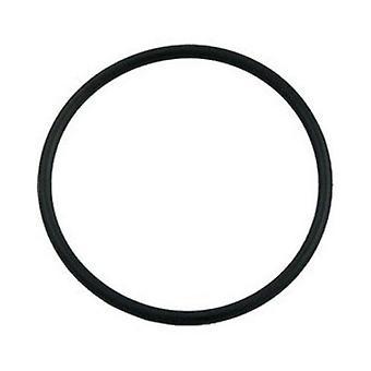 Hayward SX200Z3 o-Ring für Filter