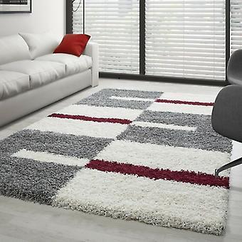 Pila alta Shaggy Longflor Alfombra de sala de estar Diseño moderno varios. Tamaños de color