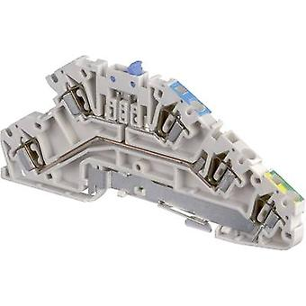 ABB 1SNA 290 324 R0300 Industrial terminal block 5 mm Pull spring Configuration: Terre, N, L Grey, Blue, Green, Yellow 1 pc(s)