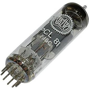 PCL 81 Vacuum tube Triode output pentode 150 V, 200 V 1.3 mA, 30 mA Number of pins: 9 Base: Noval Content 1 pc(s)