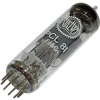 PCL 81 Vakuumrohr Triode Ausgang Pentode 150 V, 200 V 1,3 mA, 30 mA Anzahl der Stifte: 9 Basis: Noval Inhalt 1 Stk.