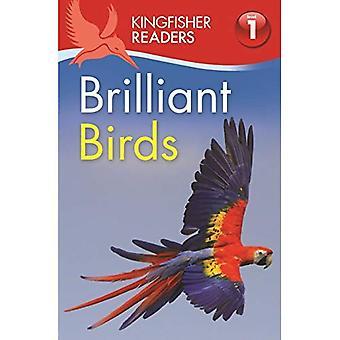 Ijsvogel lezers: Briljante vogels (niveau 1: begin te lezen)