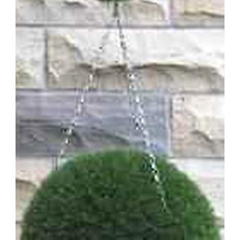 Boxwood Ball Hanging Chains
