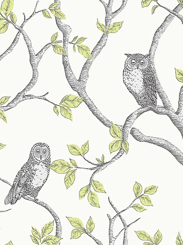 Woodland Owls Wallpaper Fine Decor