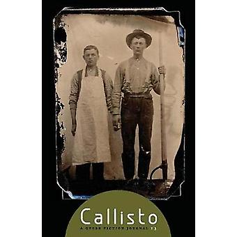 Callisto Issue 13 A Queer Fiction Journal by Luczak & Raymond