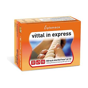 Vittal In Express (Geleia Real) 20 ampolas de 10ml