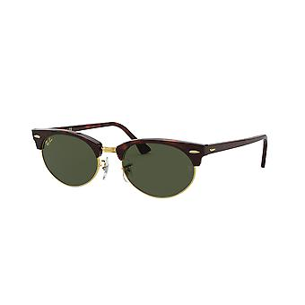 Ray-Ban Clubmaster Oval RB3946 1304/31 Mock Tortoise/Green Glasses