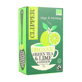 Green Tea with Lime and Organic Ginger 20 infusion bags of 40g