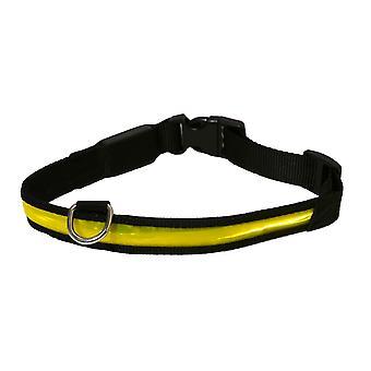 Rosewood Premium Flashing Pet Collar
