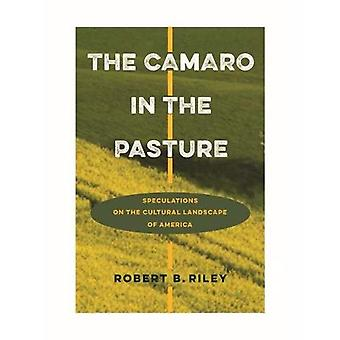 The Camaro in the Pasture:� Speculations on the Cultural Landscape of America