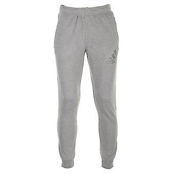 Adidas Prime Pant AI7480 uniwersalne spodnie męskie