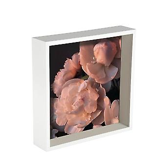 Nicola Frühling 2 Stück Box Fotorahmen Set - 10 x 10 Quadrat AcrylRahmen - weiß