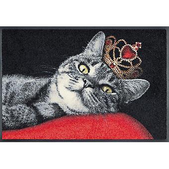 lavage + tapis sec du Royal chat 50 x 75 cm lavable étage chat mat motif