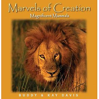 Marvels Of Creation ''Magnificent Mammals