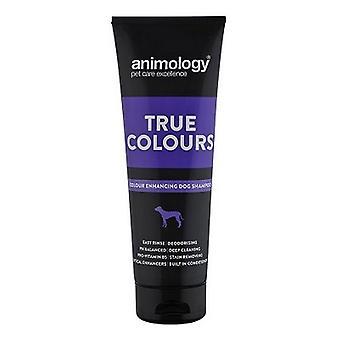 Animology True Colours Dog Liquid Shampoo