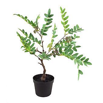 50cm künstliche immergrüne Laubpflanze mit Beeren