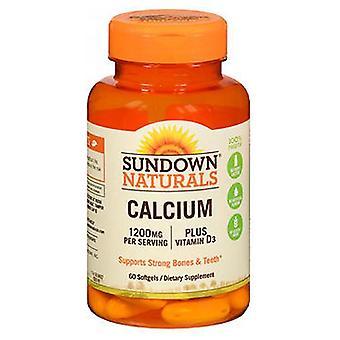 Sundown Naturals Calcium Plus Vitamin D3, 1200 mg, 60 caps