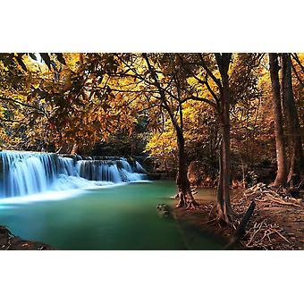 Wall Mural Deep Autumn Forest Waterfall