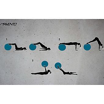 Avento Fitness-/Gymnastikbal Durchm. 55 cm Zilver