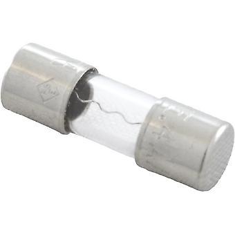 Littelfuse 225004 4A 2AG 14.48mm Clear Glass Sundance 850