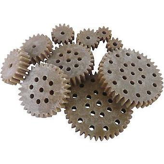 Reely Holz, Kunststoff Zahnrad set Modultyp: 1.0 Nr. Zähne: 10, 15, 20, 30, 40 10 PC