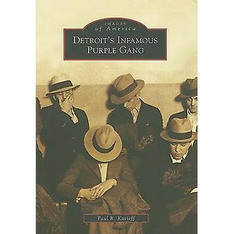 Detroit's Infamous Purple Gang by Paul R Kavieff - 9780738552385 Book