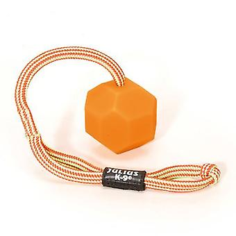 Julius K9 Pelota Idc Fluorescente  Naranja (Dogs , Toys & Sport , Balls)