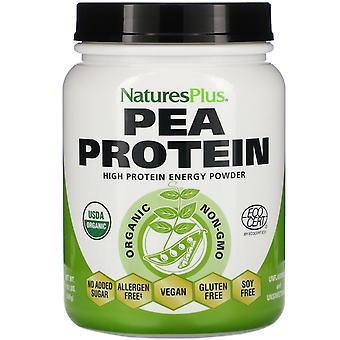 Nature's Plus, Polvo de proteína de guisante orgánico, 1.10 lbs (500 g)