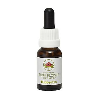 Hibbertia 15 ml of floral elixir